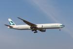 GOOSEMAN777さんが、成田国際空港で撮影したキャセイパシフィック航空 777-367/ERの航空フォト(写真)