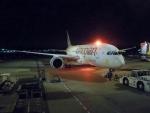 ハピネスさんが、成田国際空港で撮影したエチオピア航空 787-8 Dreamlinerの航空フォト(写真)