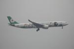 Masahiro0さんが、台湾桃園国際空港で撮影したエバー航空 A330-302Xの航空フォト(写真)