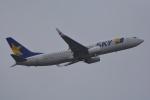 SKY☆101さんが、茨城空港で撮影したスカイマーク 737-8HXの航空フォト(写真)