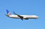 amagoさんが、成田国際空港で撮影したユナイテッド航空 737-824の航空フォト(写真)