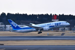 turenoアカクロさんが、成田国際空港で撮影した全日空 787-881の航空フォト(写真)