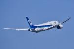 naripicさんが、伊丹空港で撮影した全日空 787-881の航空フォト(写真)