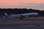 gucciyさんが、成田国際空港で撮影した全日空 777-381/ERの航空フォト(写真)
