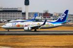 KAZ_YYZさんが、伊丹空港で撮影した全日空 737-881の航空フォト(写真)