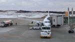 raichanさんが、大館能代空港で撮影した全日空 737-881の航空フォト(写真)