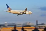NIKKOREX Fさんが、成田国際空港で撮影したユナイテッド航空 787-8 Dreamlinerの航空フォト(写真)