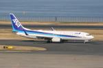 いっとくさんが、羽田空港で撮影した全日空 737-881の航空フォト(写真)
