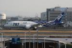いっとくさんが、羽田空港で撮影した全日空 787-881の航空フォト(写真)