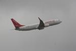 いっとくさんが、成田国際空港で撮影したイースター航空 737-86Jの航空フォト(写真)