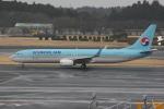 いっとくさんが、成田国際空港で撮影した大韓航空 737-9B5/ER の航空フォト(写真)