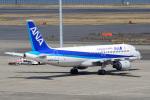 てくさんが、羽田空港で撮影した全日空 A320-211の航空フォト(写真)