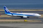 てくさんが、羽田空港で撮影した全日空 737-881の航空フォト(写真)