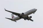 JA882Aさんが、小松空港で撮影した日本航空 737-846の航空フォト(写真)
