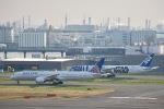 shiraponさんが、羽田空港で撮影したユナイテッド航空 787-9の航空フォト(写真)