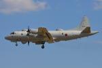 350JMさんが、厚木飛行場で撮影した海上自衛隊 EP-3の航空フォト(写真)
