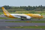 K.787.Nさんが、成田国際空港で撮影したスクート 787-8 Dreamlinerの航空フォト(写真)