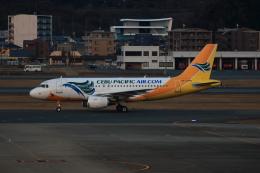 MOHICANさんが、福岡空港で撮影したセブパシフィック航空 A319-111の航空フォト(写真)