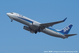 tabi0329さんが、福岡空港で撮影した全日空 737-881の航空フォト(写真)
