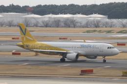 ジャンクさんが、成田国際空港で撮影したバニラエア A320-214の航空フォト(写真)