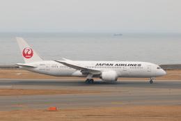 SIさんが、中部国際空港で撮影した日本航空 787-846の航空フォト(写真)