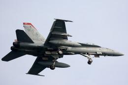Kanarinaさんが、岩国空港で撮影したアメリカ海兵隊 F/A-18C Hornetの航空フォト(写真)