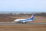 男前☆青大将さんが、新潟空港で撮影したANAウイングス 737-54Kの航空フォト(写真)