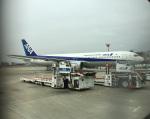 ライトブルーレフトさんが、伊丹空港で撮影した全日空 767-381の航空フォト(写真)