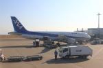 dianaさんが、羽田空港で撮影した全日空 A320-211の航空フォト(写真)