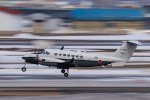 noriphotoさんが、札幌飛行場で撮影した陸上自衛隊 LR-2の航空フォト(写真)