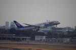ライトブルーレフトさんが、伊丹空港で撮影した全日空 787-881の航空フォト(写真)