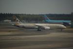 中村ひろのりさんが、成田国際空港で撮影したエティハド航空 787-9の航空フォト(写真)