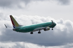 romyさんが、ペインフィールド空港で撮影したサウスウェスト航空 737-800の航空フォト(写真)