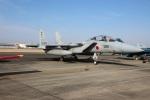ショウさんが、名古屋飛行場で撮影した航空自衛隊 F-15DJ Eagleの航空フォト(写真)