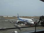 MiyaYuniさんが、宮崎空港で撮影した全日空 787-881の航空フォト(写真)