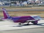 MiyaYuniさんが、宮崎空港で撮影したピーチ A320-214の航空フォト(写真)