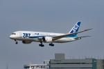 Mochi7D2さんが、成田国際空港で撮影した全日空 787-881の航空フォト(写真)