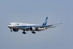 Mochi7D2さんが、成田国際空港で撮影した全日空 777-381/ERの航空フォト(写真)