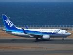 えぬえむさんが、中部国際空港で撮影した全日空 737-781の航空フォト(写真)