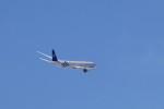 GRX135さんが、新千歳空港で撮影した大韓航空 777-3B5/ERの航空フォト(写真)