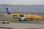 ライダーさんが、羽田空港で撮影した全日空 777-281/ERの航空フォト(写真)