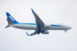 ryo1007さんが、福岡空港で撮影した全日空 737-881の航空フォト(写真)