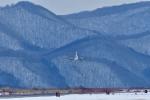 Dojalanaさんが、函館空港で撮影した海上保安庁 B300の航空フォト(写真)