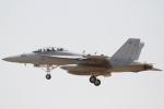とらとらさんが、厚木飛行場で撮影したアメリカ海軍 F/A-18E Super Hornetの航空フォト(写真)