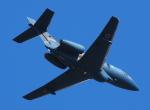 自由猫さんが、小松空港で撮影した航空自衛隊 U-125A(Hawker 800)の航空フォト(写真)