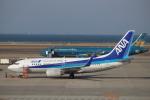 reonさんが、中部国際空港で撮影した全日空 737-781の航空フォト(写真)