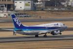 HEATHROWさんが、伊丹空港で撮影したANAウイングス 737-5L9の航空フォト(写真)