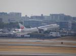 ライトブルーレフトさんが、伊丹空港で撮影した日本航空 737-846の航空フォト(写真)
