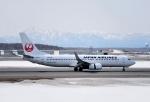 バーダーさんさんが、新千歳空港で撮影した日本航空 737-846の航空フォト(写真)