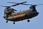 AkilaYさんが、厚木飛行場で撮影した陸上自衛隊 CH-47Jの航空フォト(写真)